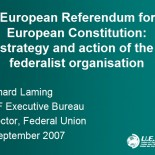 A European Referendum for a European Constitution